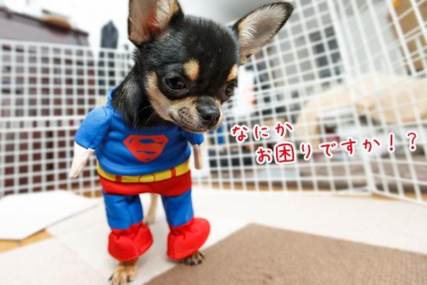 はじめてのスーパーマン
