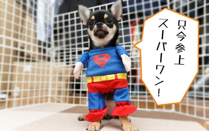 只今参上スーパーマン