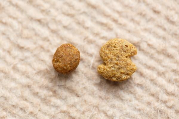 ドッグフードの粒の大きさ比較