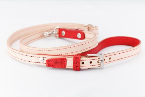 犬用の革製首輪のリード