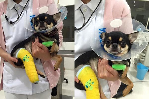 無事手術が終了しました