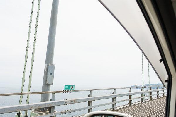 チワワと渡る明石海峡大橋はテンション上がる